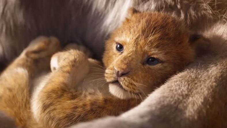 aslan kral türkçe