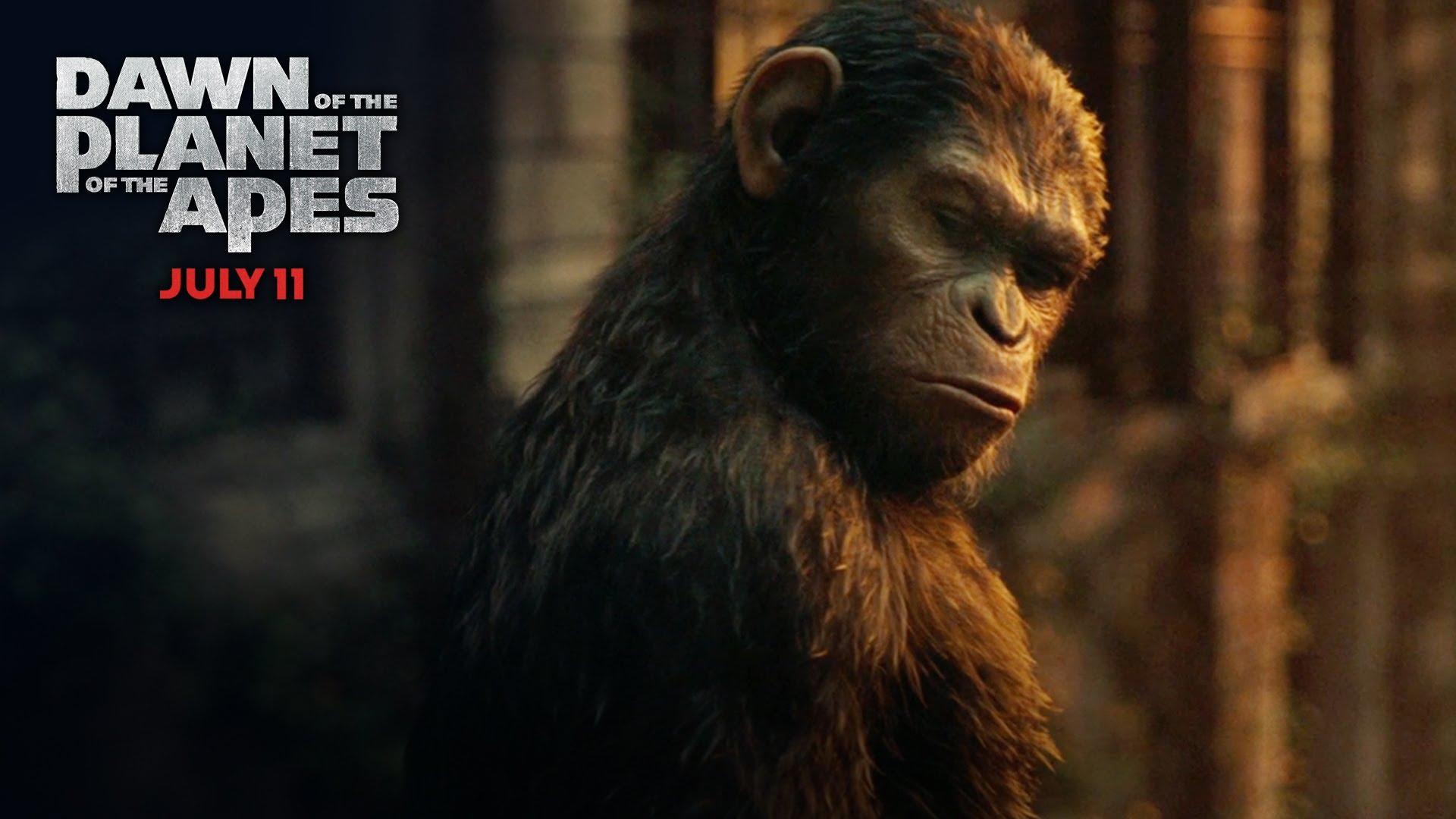 Maymunlar Cehennemi Şafak Vakti film eleştirisi
